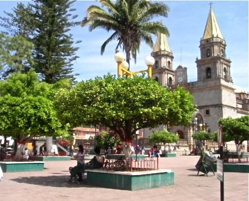 Talpa square