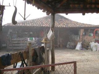 Talpa rancho barnyard